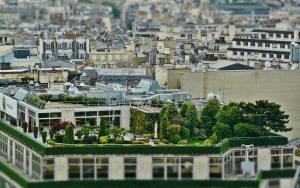 roof-terrace-1423897_1920